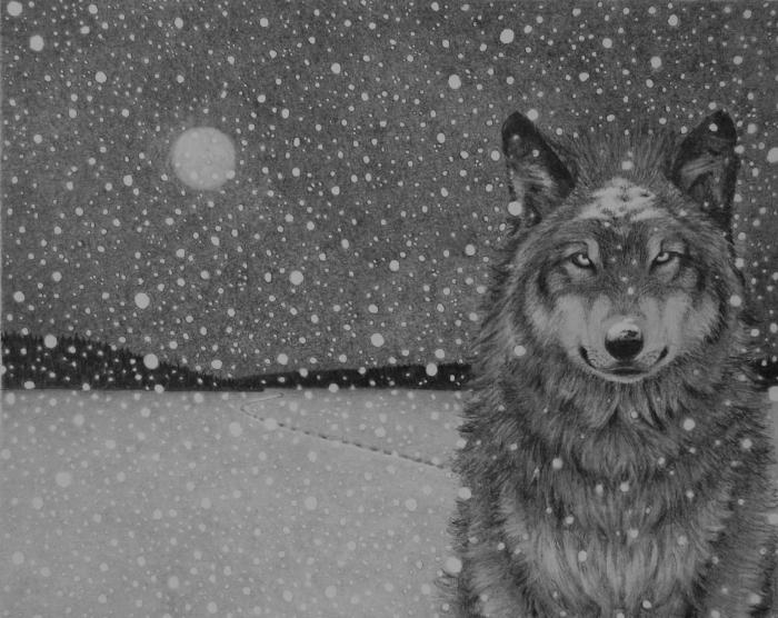 Wolf moon edit1
