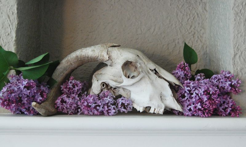 Altar in lilac