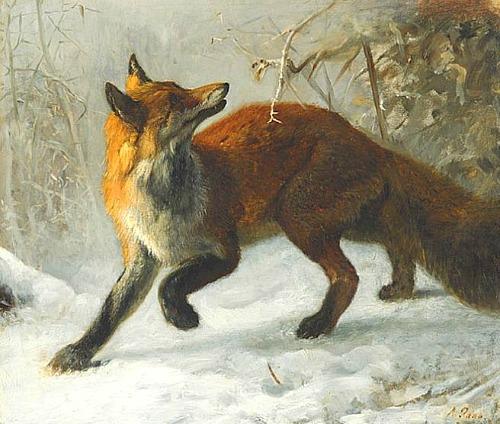 Fox- axel raab