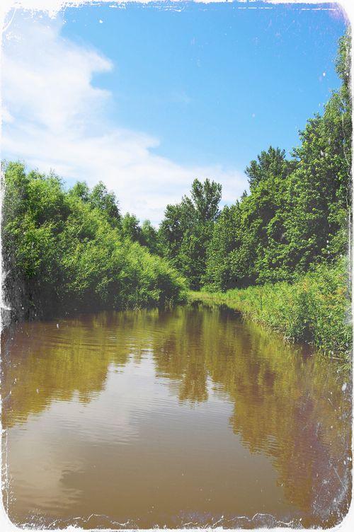 Backwater3